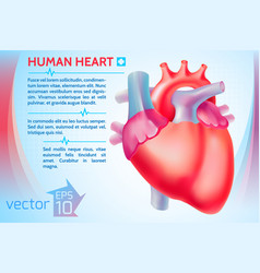 healthy medicine template vector image