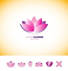 Lotus flower pond logo icon set vector