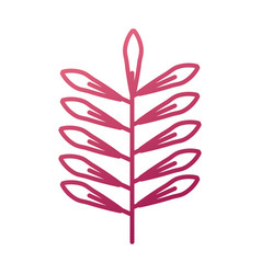branch leaves natural foliage flora icon vector image