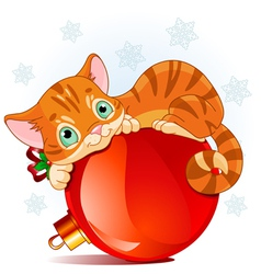 Christmas kitten vector
