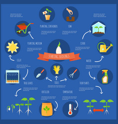 Seedling infographic set vector