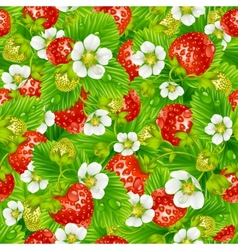strawberry seamless background vector image vector image