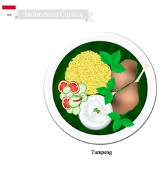 Tumpeng or indonesian yellow rice vector