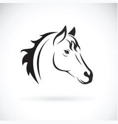 Horse head on white background wild animal vector