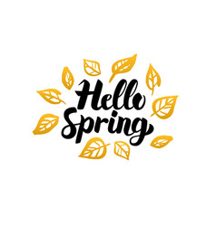 Hello spring gold greeting card vector