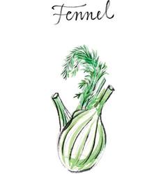 watercolor fennel vector image