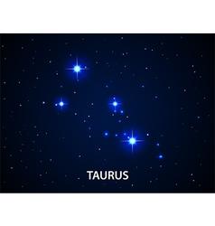 Set of symbol zodiac taurus vector