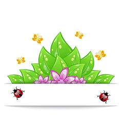 Eco friendly card with green leaves flower vector image