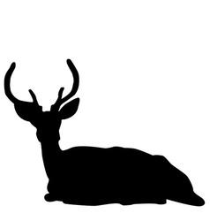 Deer stag silhouette vector