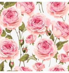 English roses seamless vector