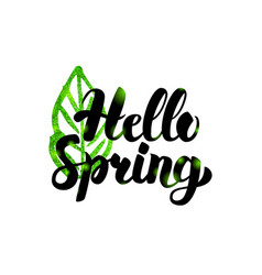 Hello spring green inscription vector