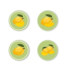 Round stickers with a tropical mango fruit vector
