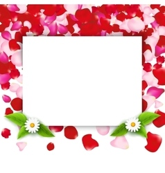 Rose petals frame invitation for party or wedding vector