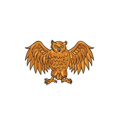 Angry owl wings spread drawing vector