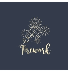 Firework company logo design on dark vector