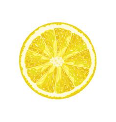 Half of lemon vector