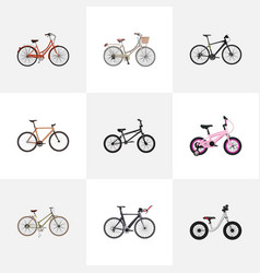 Realistic equilibrium competition bicycle vector