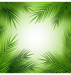 Tropical palm tree frame with copy space vector