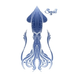 Graphic squid vector