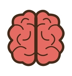 Red brain front view graphic vector