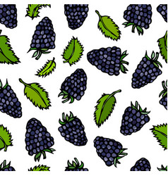 seamless blackberry and mint leaves doodle style vector image vector image