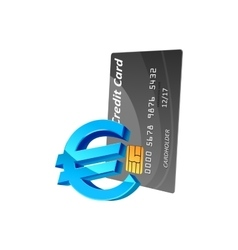 Euro currency sign and credit card vector