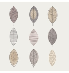 Similar shape leaf set vector
