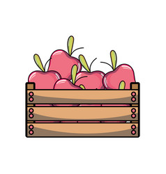 Delicious apples fruits inside basket vector