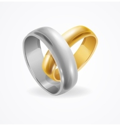 Silver and Gold Wedding Ring vector image vector image