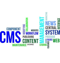 word cloud cms vector image