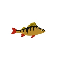 Perch fish icon in flat style vector