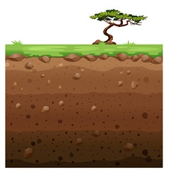 Single tree on surface and underground scene vector