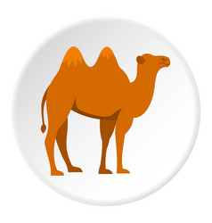 Camel icon circle vector