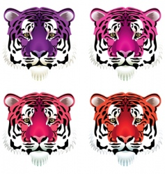 tiger heads vector image vector image