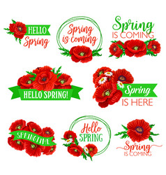 Hello spring floral symbol set with flower bouquet vector