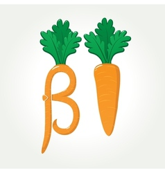 Beta-carotene provitamin a healthy carrot vector