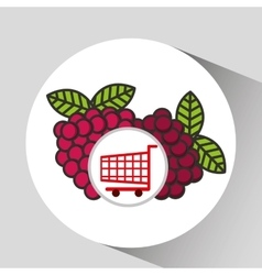 Cart shopping fruit raspberry icon graphic vector