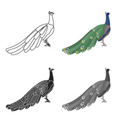 Peacock icon in cartoon style isolated on white vector