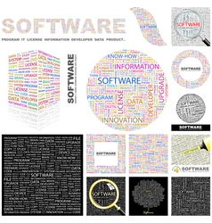 Software vector