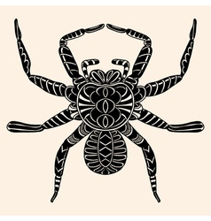 Spider with abstract pattern vector