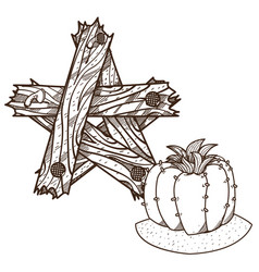 Blooming cactus star made of planks outline vector