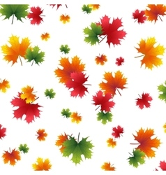 Autumn yellowed maple leaf on a white background vector image