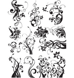 Floral decorative graphic elements vector