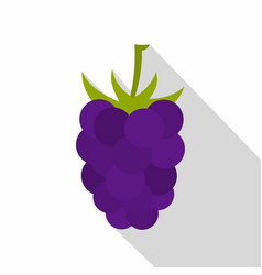 fresh blackberry icon flat style vector image