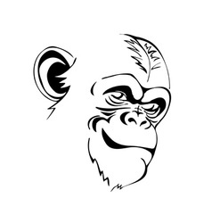 Head angry chimp vector