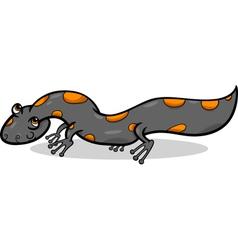 Salamander animal cartoon vector
