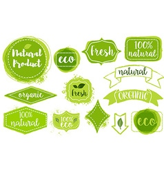 set of organic fresh eco labels vector image