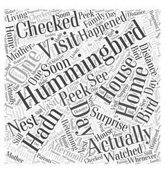 Hummingbird house word cloud concept vector