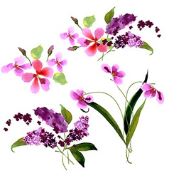 Lilac flowers watercolor floral vector