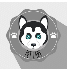 Dog pet care icon vector